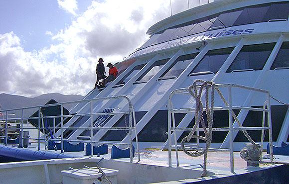 Cairns Marine Glass